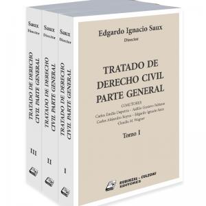 Tratado de Derecho Civil Parte General